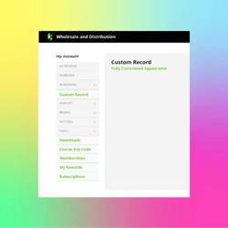 Display Custom Record NetSuite App