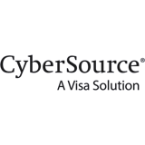 CyberSource Anchor Group NetSuite consultants
