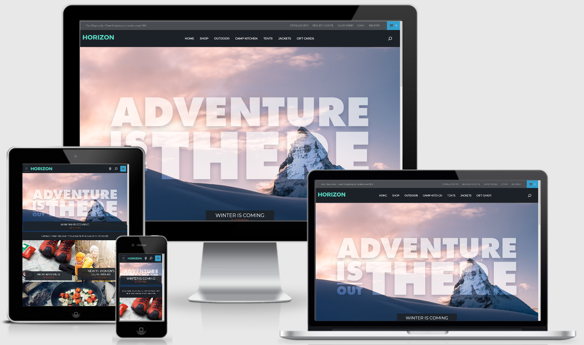 SuiteCommerce Horizon best erp software
