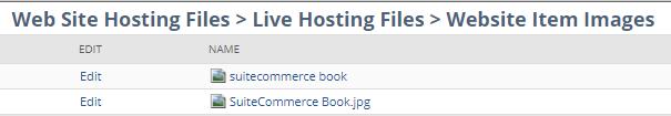 NetSuite File cabinet Website hosting files