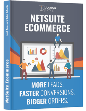 Free NetSuite Ecommerce Book