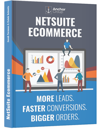 NetSuite Ecommerce Book