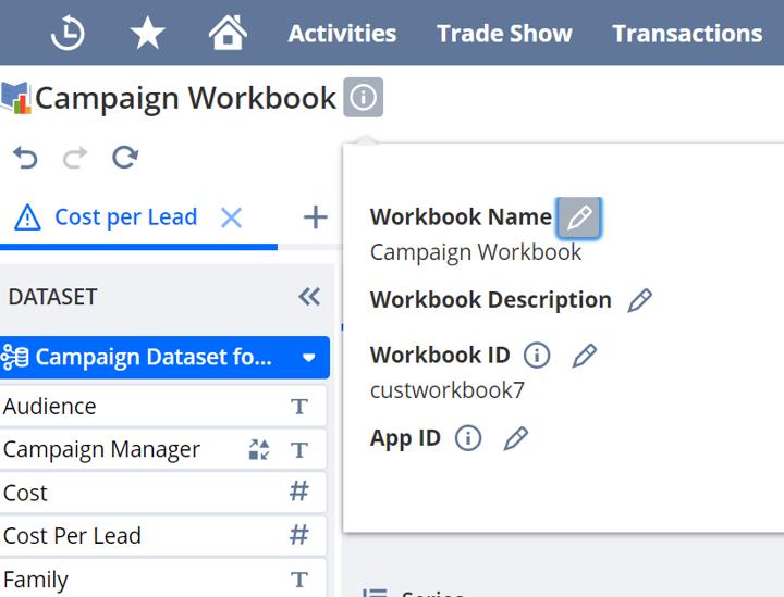 NetSuite workbook
