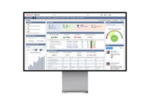 NetSuite Consultants