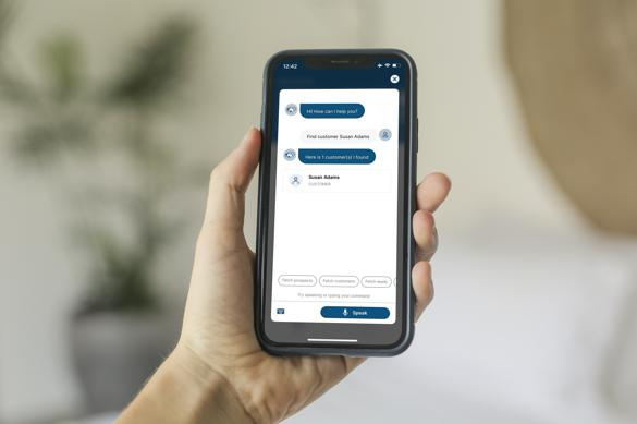 ERP Buddy NetSuite app