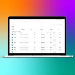 Wholesale bulk order NetSuite App