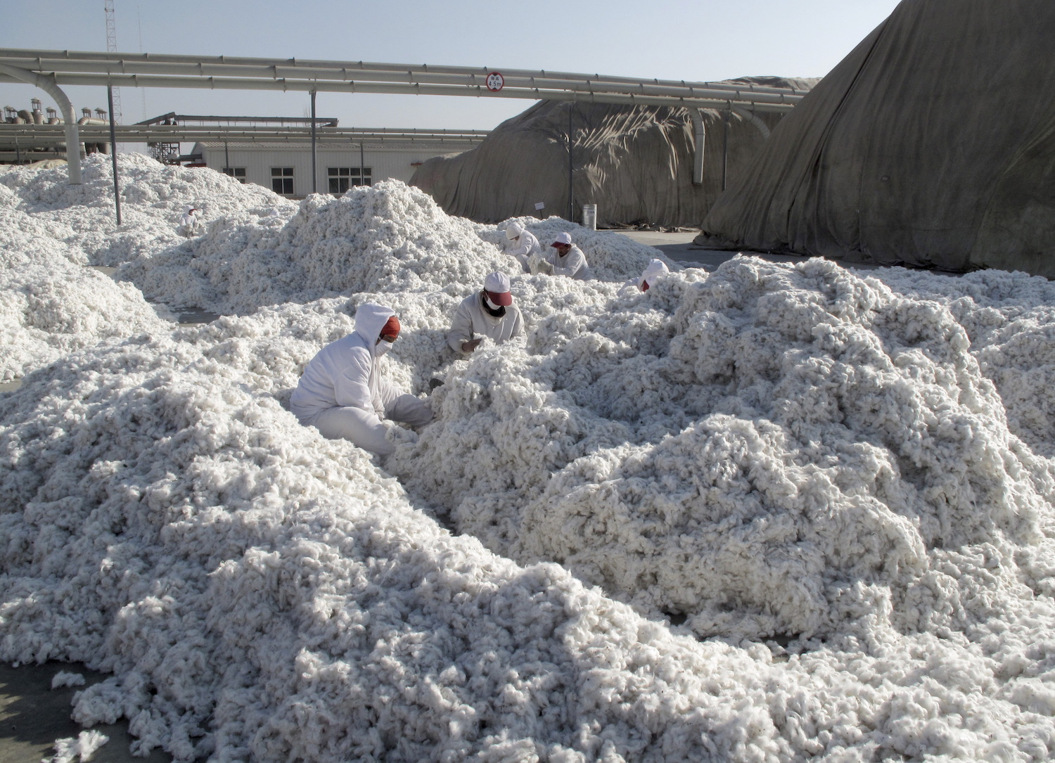 The great cotton conspiracy