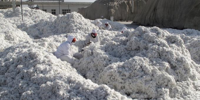 US pulls back from broad bans on Xinjiang cotton, tomatoes
