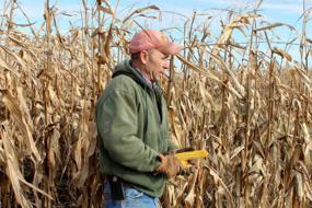 Corn futures hit 8-year high on China demand and low supplies