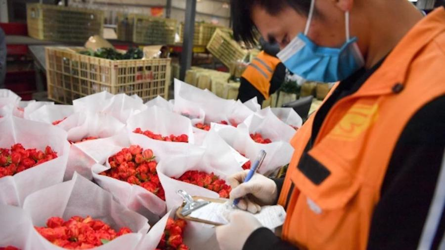 China virus outbreak shrivels small firms