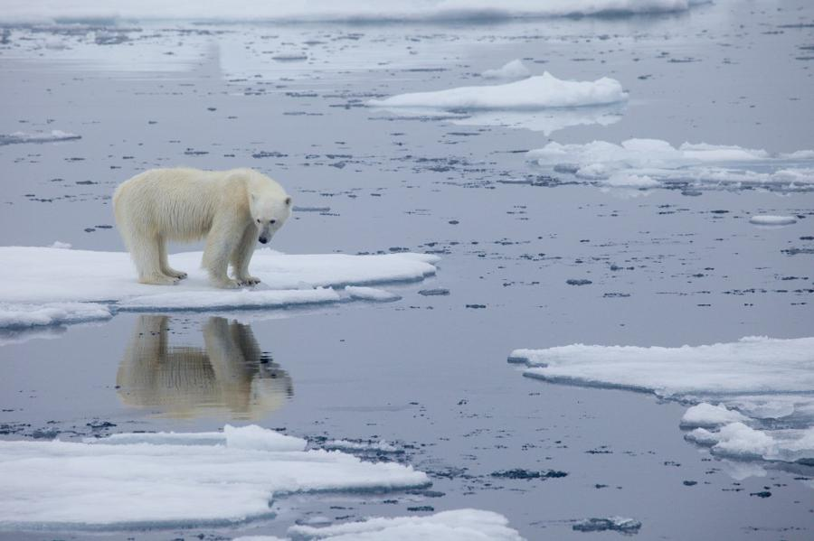 New rules of engagement on climate change