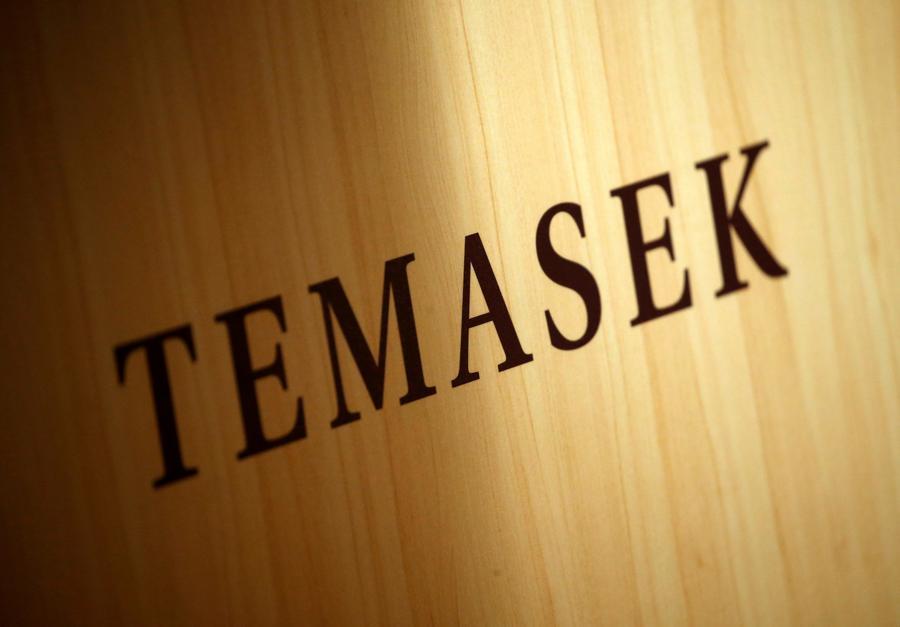 Temasek 'eyeing stake in Ant IPO'