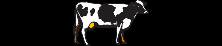 cattle-industry-market-power