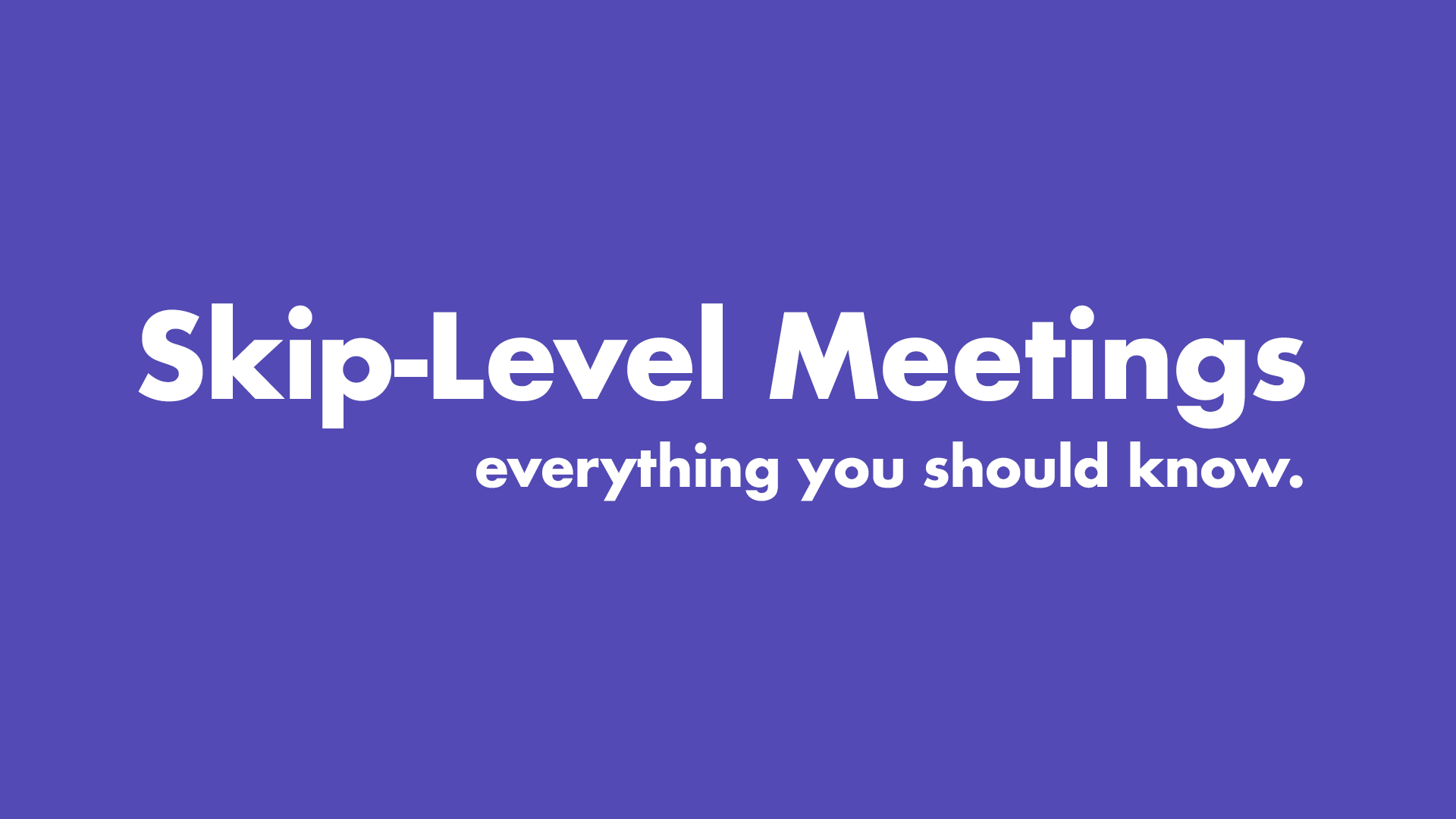 Skip Level Meetings