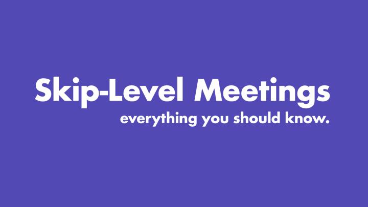 Skip Level Meetings
