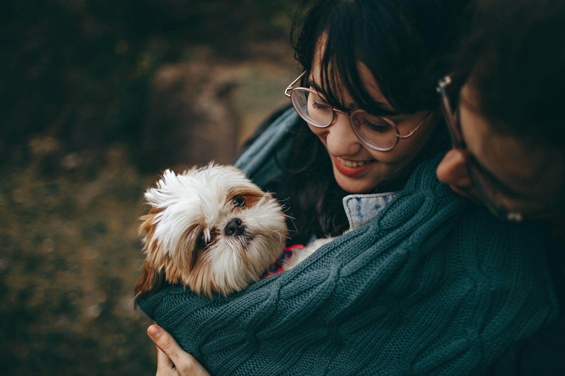 How Does Smoking Affects Pet's Health