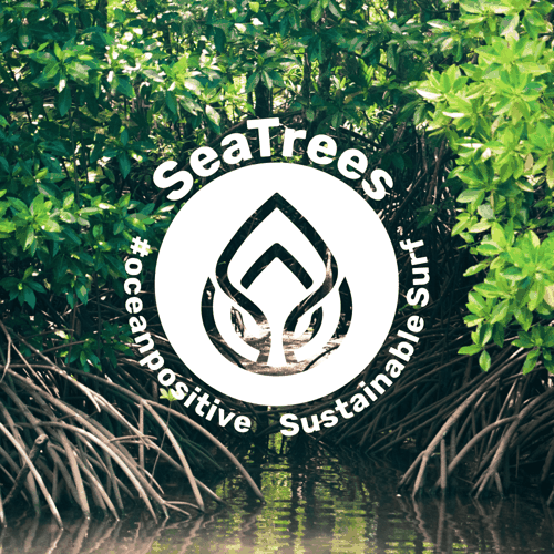 SeaTrees logo on mangrove forest photo
