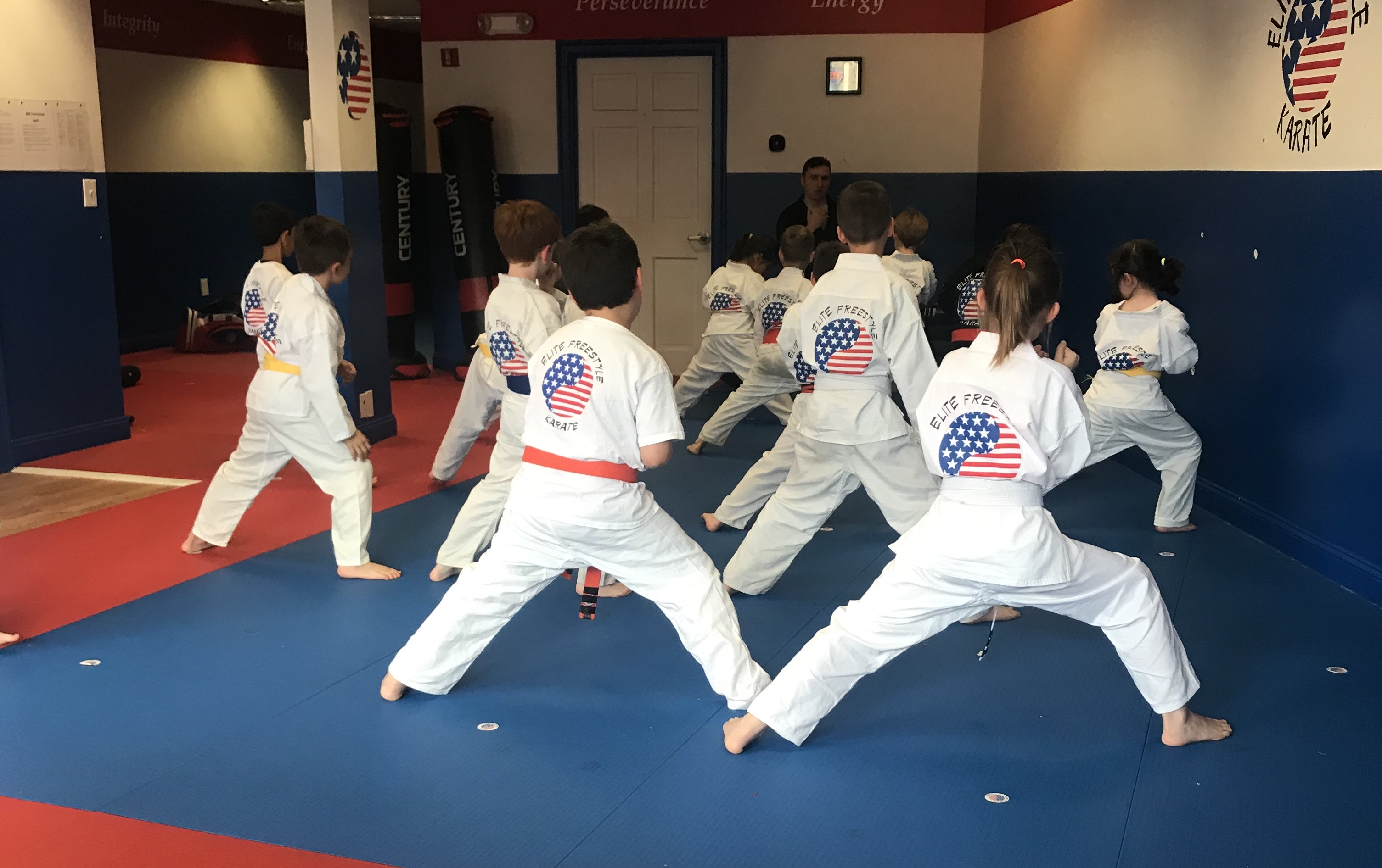 The Best Upsell Ever: Elite Freestyle Karate