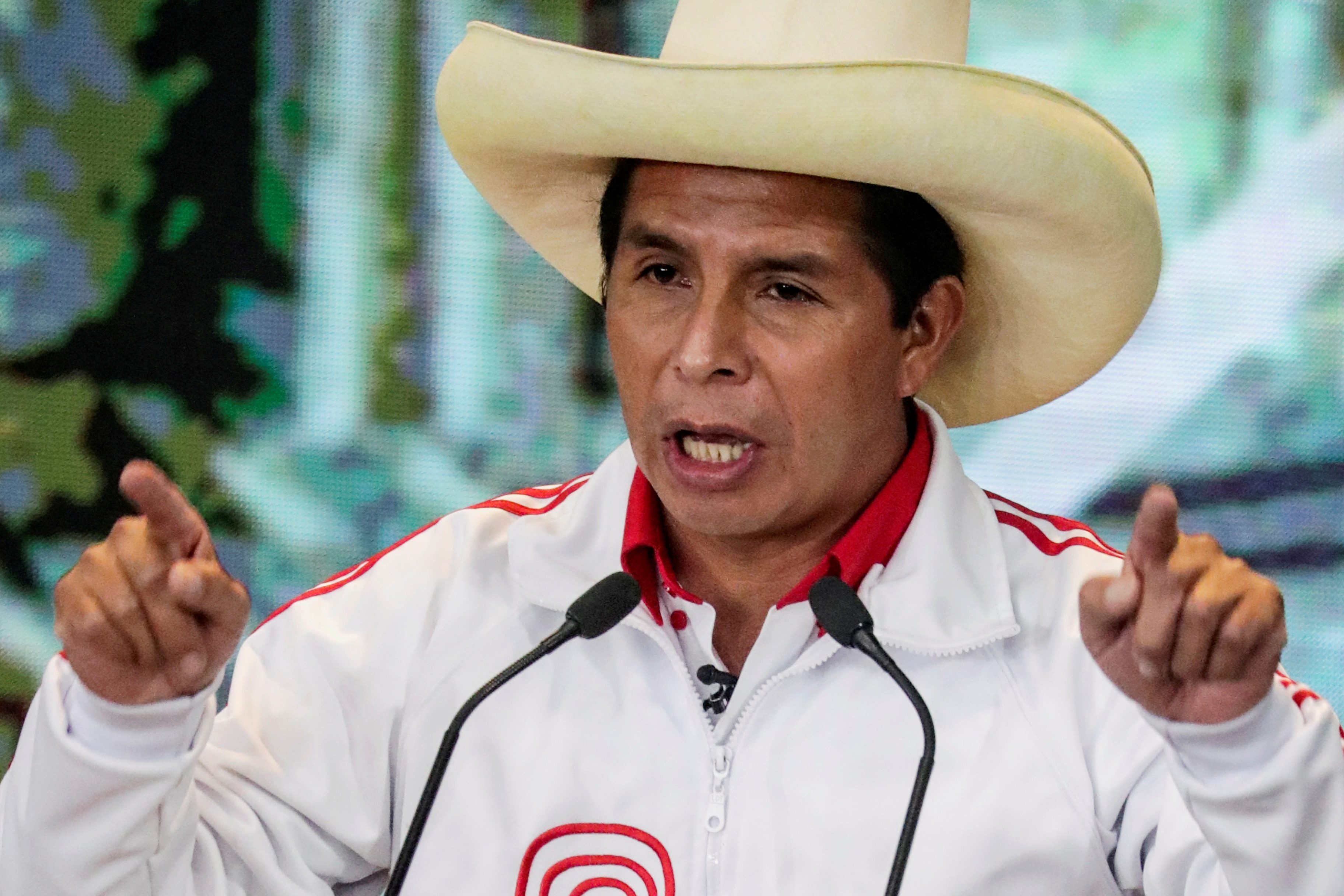 Peasant roots to president? Peru's Castillo, the champion of the poor