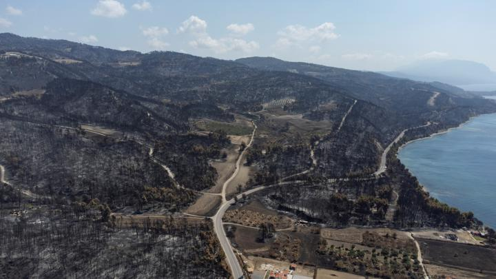 FILE PHOTO: Burnt hillsides are seen following a wildfire near the village of Rovies on the island of Evia, Greece, August 12, 2021. Picture taken with a drone. REUTERS/Alkis Konstantinidis