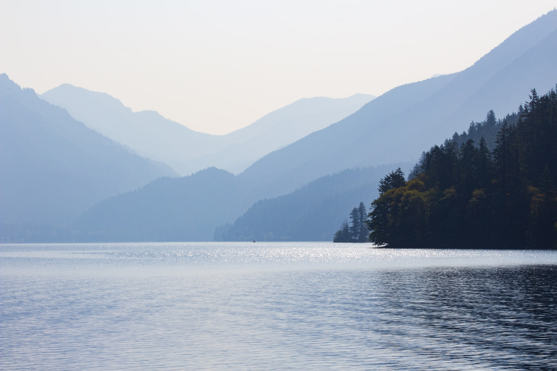 trees beside body of water distant from mountain