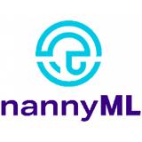 Nanny ML Logo