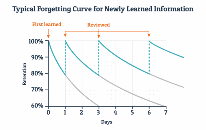 typical learning and forgetting curve