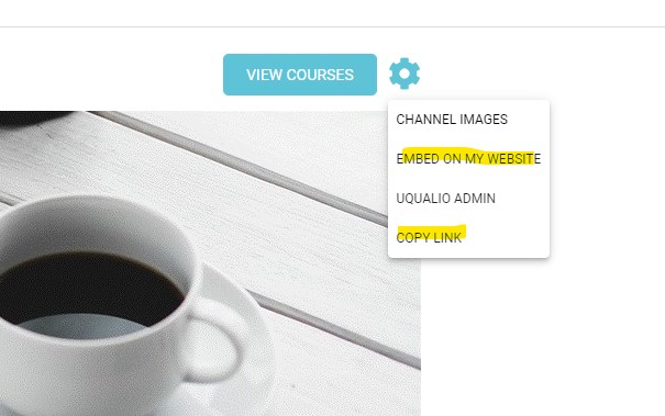 Copy and Embed example