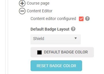 Badge format defaults