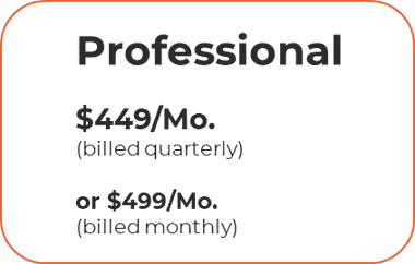 Pricing professional level