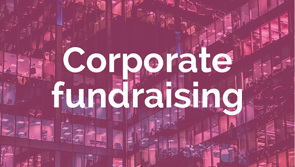 Corporate fundraising strategy