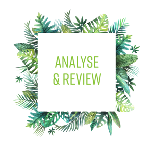 Analyse & Review