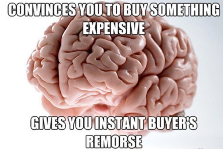 post purchase dissonance meme
