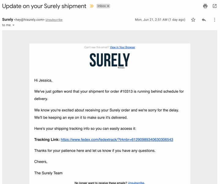 hisurely.com delayed email klaviyo