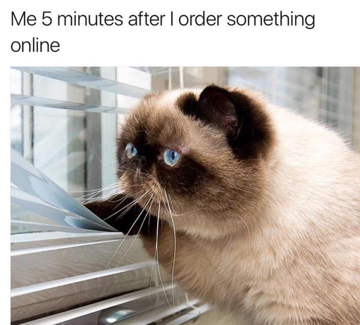waiting for online order meme