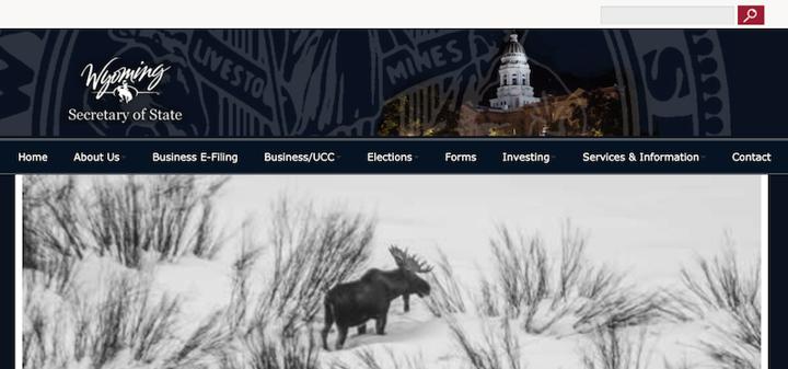 llc vs c corp filing example on wyoming website