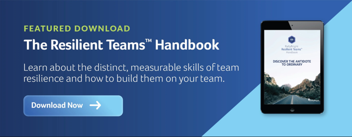 Team Success Playbook